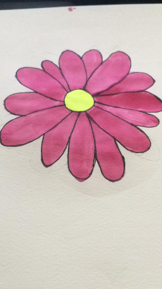 Most recent image: pink daisy