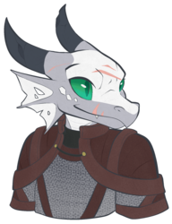 [Com] Sun the kobold Paladin