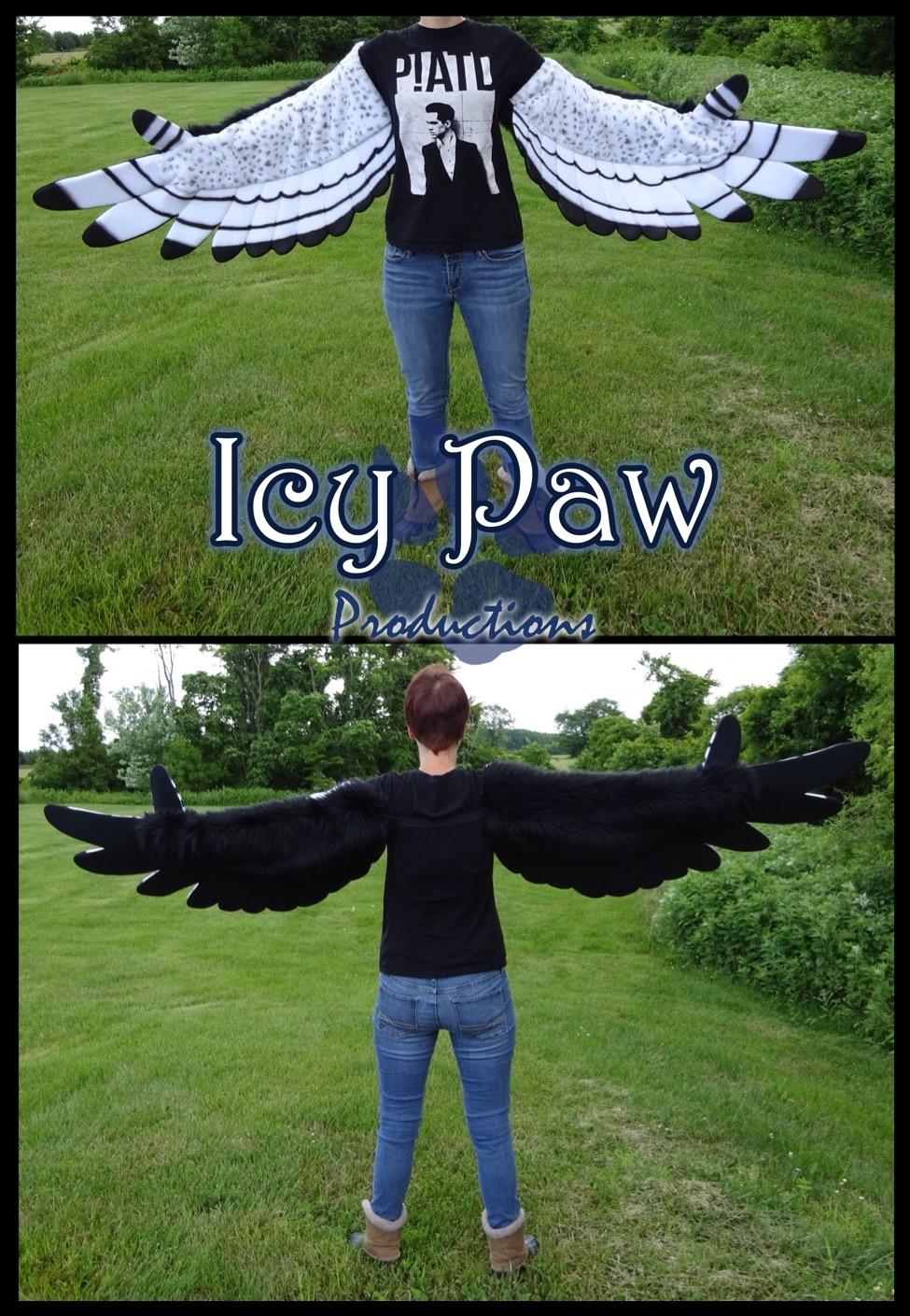 Peregrine wings