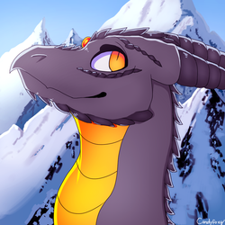 TheGreatWolfGang - Free Avatar Raffle