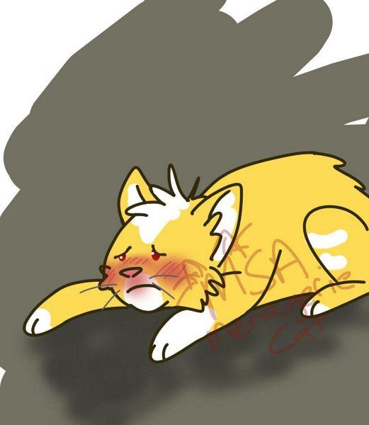 Kubie the Ill Kitty