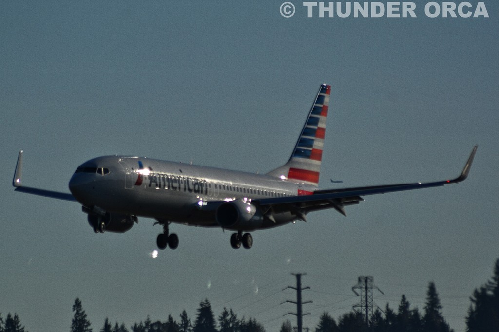 American Airline (Part 2)