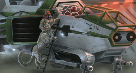 CKHF-13G.
