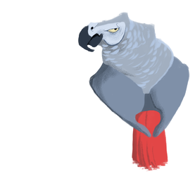 Day 82: African Grey Parrot