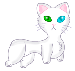 Stumpy Manx Kitty (No Collar)