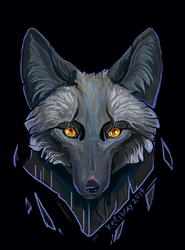 Black fox - PRINTS AVAIABLE
