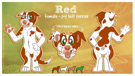 Pit Bull Character Design Commission