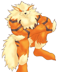 More Arcanine