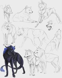 Sketch page by p-sebae