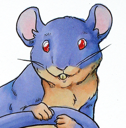Cute Little Rattata