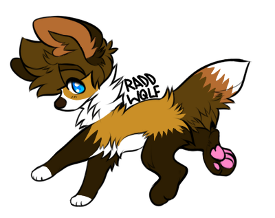Izzy the foxdog