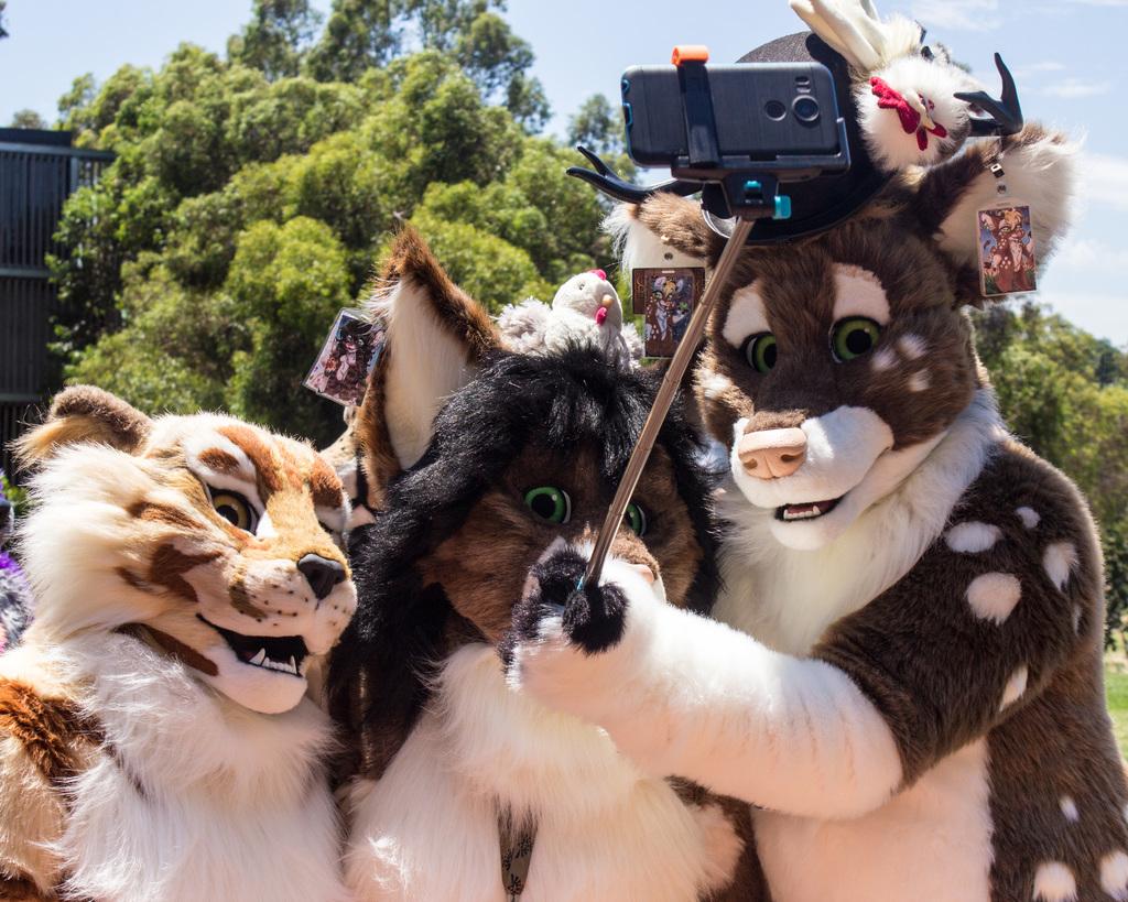 ConFurgence: Selfie