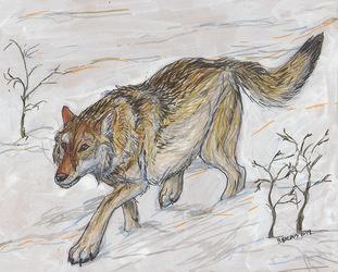 Inktober #16 - More Canis Dirus