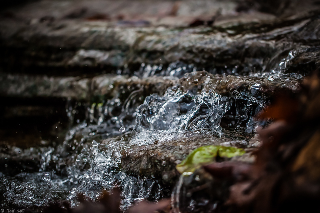 the tiniest waterfall