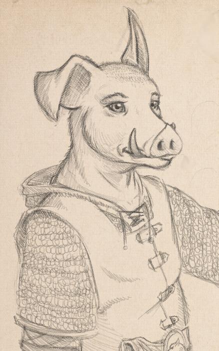 Boar sketch