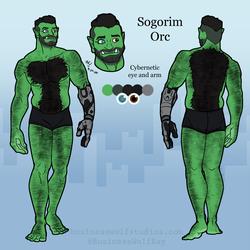 Sogorim Ref Sheet - Art by BusinessWolf