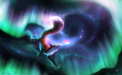 The Fox Fire