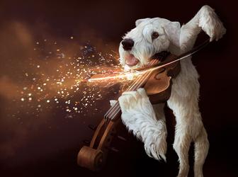hot strings