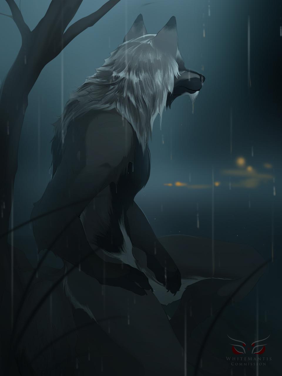 Commission: Autumnsunrise