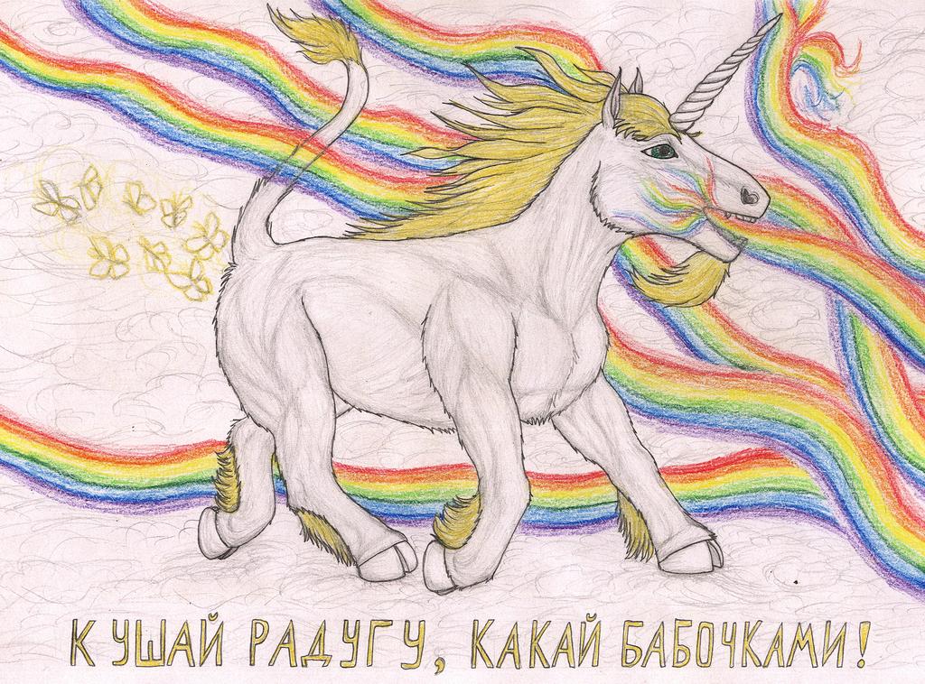 Most recent image: Eat rainbow, poop butterflies!