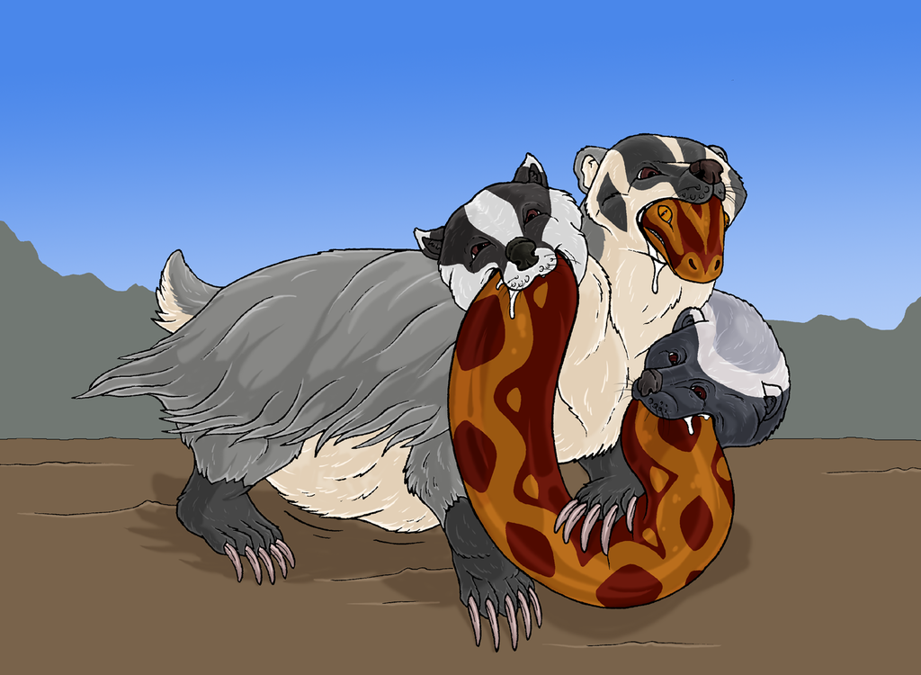 Cerbadgerus and snake