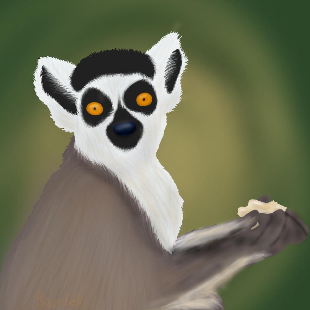 Lemur Lunch