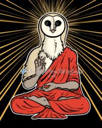 Enlightened Owl