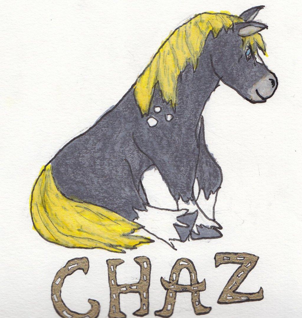 Chaz told me to draw a pony