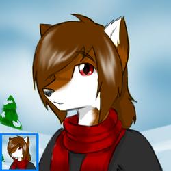 Kyote winter icon