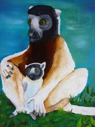 Crowned Sifaka family