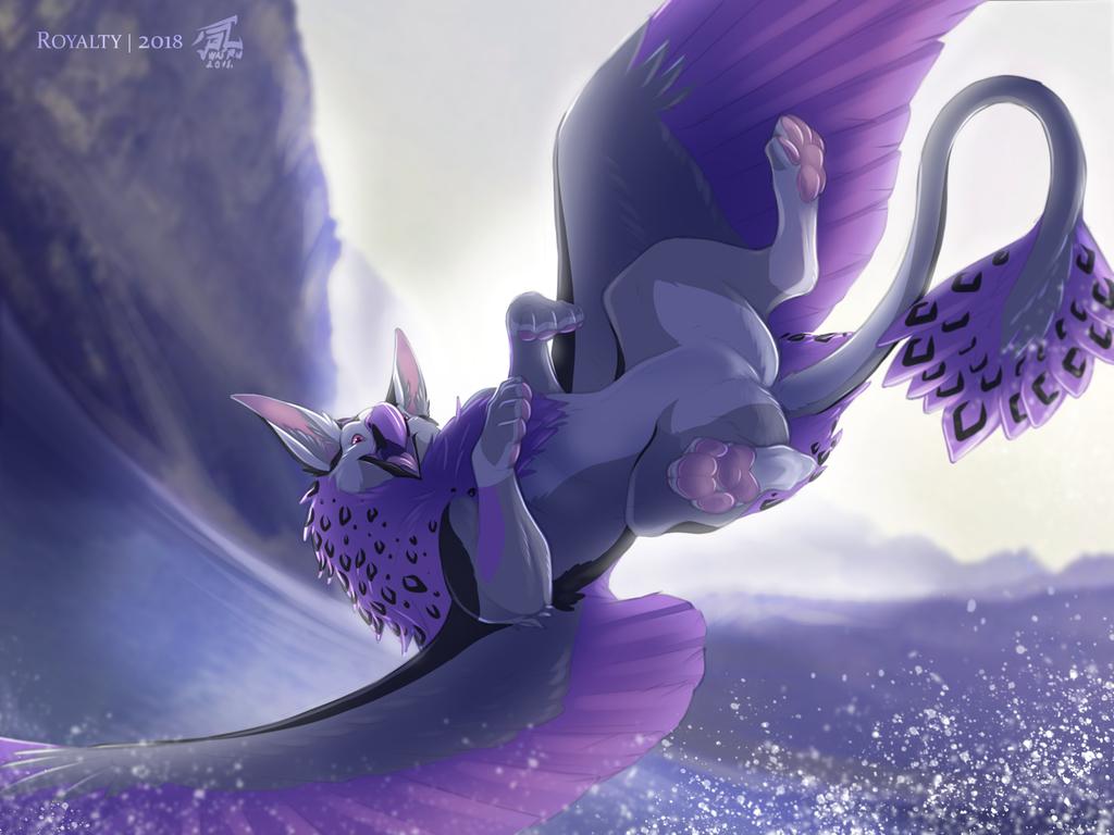Joy of soaring