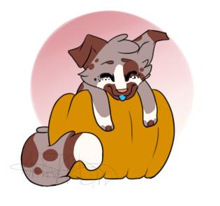 Pumpkin Hugger Freckles