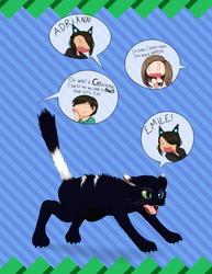 Masangry Kitty Cat