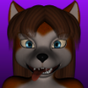 avatar of 567