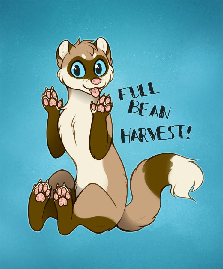 Full Bean Harvest!