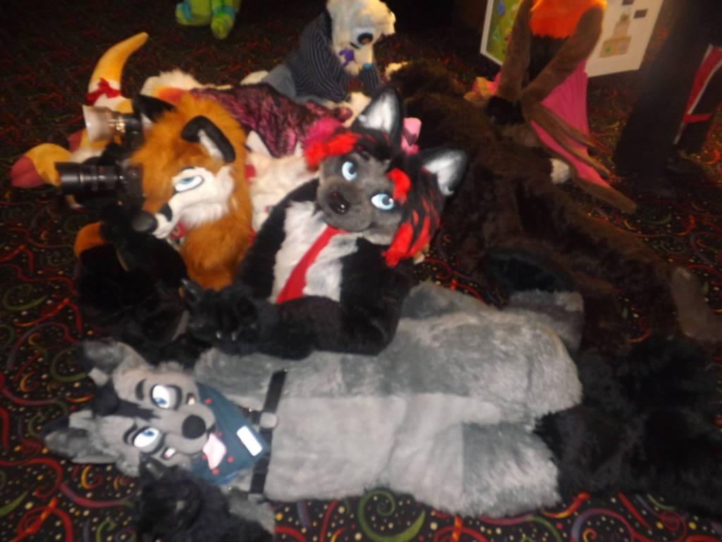 Furry Meet Pictures 14 (Part 68)