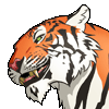 Avatar for Grinning Tiger