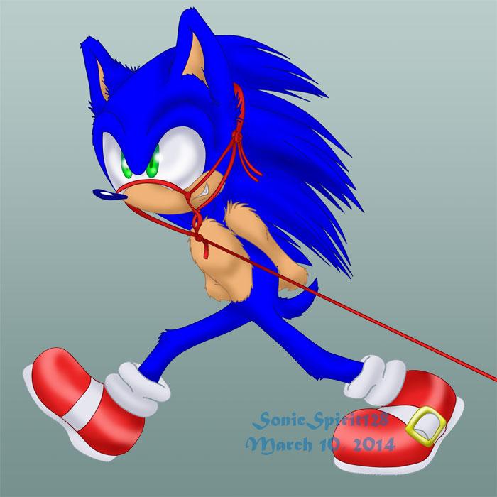 Sonic Ponyplay