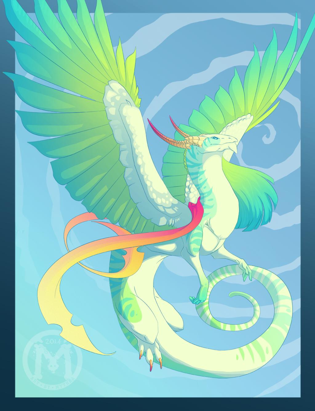 Dragon 5.16.14
