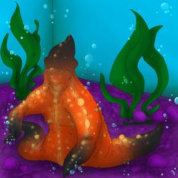 Happy Little Starfish