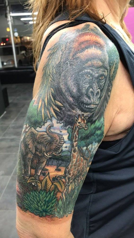 African Animals Coverup