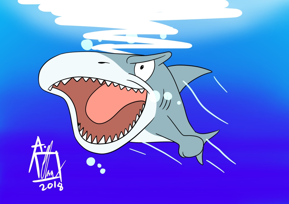 Most recent image:  Shark Week