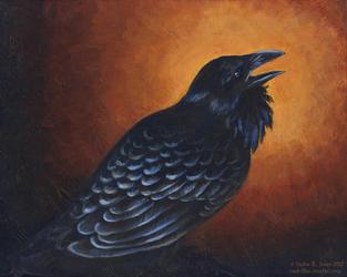 Payne's Raven