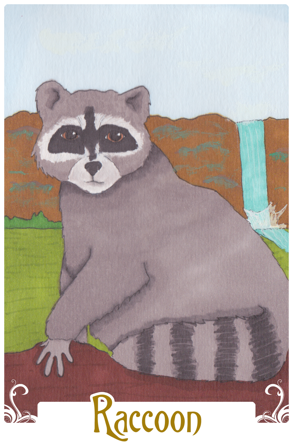 Raccoon (2014)