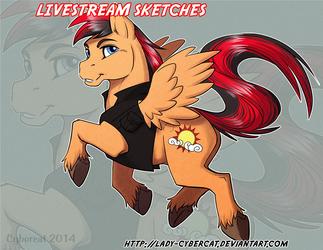 Pony YCH Final