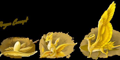 Wind Dragon Concept