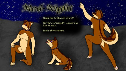 Med-Night 2014 reference sheet