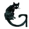 avatar of Revinir