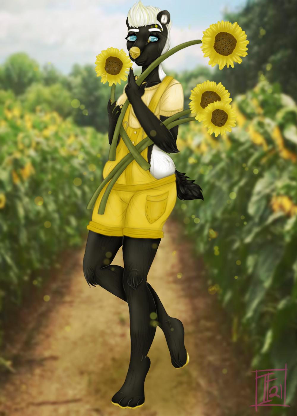 """""""Sunflower Harvest"""""""