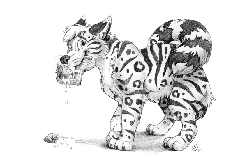 Most recent image: feral